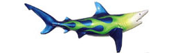 Decorating with 37-inch Blacktip Shark Sculpture